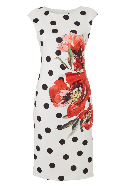 Roman Originals Women Spot Floral Print Scuba Dress